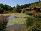 Lodge: Valley View Lakes And Lodges