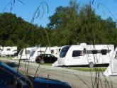 Camping/Caravanning: Woodland Springs